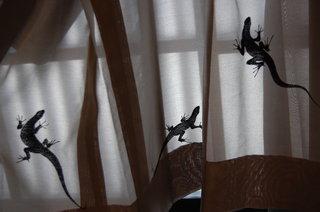 http://www.kyoshibori.com/news/assets_c/2011/10/DSC_1356-thumb-320x212-1013.jpg